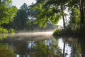 Morning on forest river Royalty Free Stock Photo