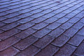 Morning frost icing on red shingles roof Royalty Free Stock Photo