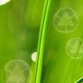 Morning grass and recycle logo Royalty Free Stock Photos