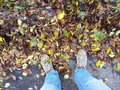 Morning jog along the autumn park and dew on sneakers Royalty Free Stock Photo