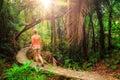 Morning jungle hike Royalty Free Stock Photo