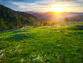 Morning landscape in the mountains Royalty Free Stock Images