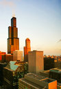 Morning light of Chicago Royalty Free Stock Photo