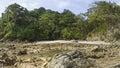 Morning low tide at playa manuel antonio in manuel antonio national park costa rica Royalty Free Stock Photography