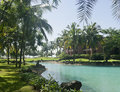 Morning in luxury tropical  resort in South Goa. Royalty Free Stock Photo