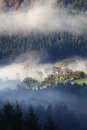 Morning mist beautiful landscape with layers of fog over forest and farmland in a welsh valley wales Stock Photography