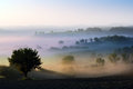 Morning mist in country Royalty Free Stock Images