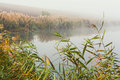 Morning mist on lake freshwater good day for fishing Royalty Free Stock Photo