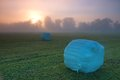 Morning mood with silo balls in bavaria Stock Photos