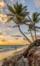 Morning in Punta Cana. Royalty Free Stock Photo