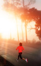 Morning run woman Royalty Free Stock Photo