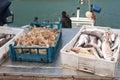 Morning sea haul Stock Photos