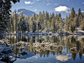 Morning after a snowstorm reflection lake lassen national park limbs in Royalty Free Stock Photography