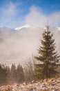 Morning time in winter mountain Royalty Free Stock Photo