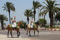 Moroccan cavalry guards Royalty Free Stock Photo