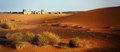 A moroccan desert scenery with sand dunes desert grass plantati plantation and an ancient arabic fortress on the background Stock Images