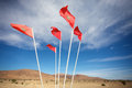 Moroccan flags in the south of agadir Stock Photos