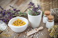 Mortar and bowl of dried healing herbs and homeopathic globules. Royalty Free Stock Photo