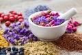 Mortar of healing herbs, herbal tea assortment and dry berries Royalty Free Stock Photo