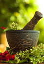 Mortar and pestle Royalty Free Stock Image