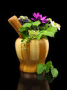 Mortar and pestle with fresh herbs on black background Stock Photos