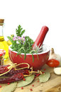 Mortar and pestle with fresh herbs red porcelain Stock Image