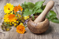 Mortar with pestle and herbs Royalty Free Stock Photo
