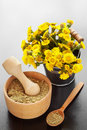 Mortar on table and bucket with coltsfoot flowers herbal medic wooden medicine Royalty Free Stock Images