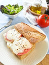 Morzarella sandwich melt mozzarella on wholewheat baguette Stock Image