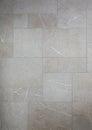 Mosaic Marble  Grey Tiles