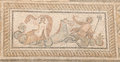 Mosaic of Triton in Terrace Houses, Ephesus Ancient City Royalty Free Stock Photo