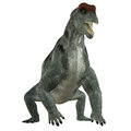 Moschops herbivore dinosaur was a primeval herbivorous that lived in south africa in the permian period Royalty Free Stock Photos