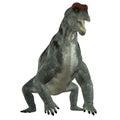 Moschops Herbivore Dinosaur Royalty Free Stock Photo