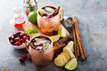Moscow mule cocktail with ginger and cranberry Royalty Free Stock Photo