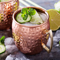 Moscow mule cocktail with lime and cucumber Royalty Free Stock Photo