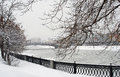 Snowstorm in Moscow Royalty Free Stock Photo