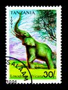 African Elephant (Loxodonta africana), serie, circa 1991 Royalty Free Stock Photo
