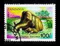 Asian Elephant (Elephas maximus), serie, circa 1991 Royalty Free Stock Photo