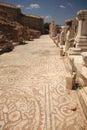Mosiac street Ephesus Turkey Royalty Free Stock Photo