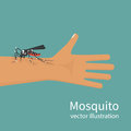 Mosquito bite on skin hand human