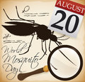 Mosquito Illustration, Magnifying Glass, Notes and Calendar for Mosquito Day, Vector Illustration