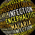 Mosquito infection diseases info text Stock Image