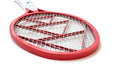 Mosquito racket Royalty Free Stock Photography