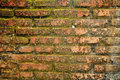 Moss brick wall texture grunge abstract & backgrounds Royalty Free Stock Photo