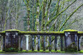 Moss Covered Bridge Stock Photos