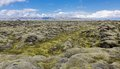 Moss covered lava fields the expansive and mountain in iceland Royalty Free Stock Images