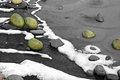 Moss covered rocks on frozen lake in winter Stock Photos