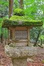 Moss and fern growing on stone lanterns in nara japan near kasuga shrine Stock Photo