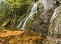 Moss Glen Falls Leaf Swirls Royalty Free Stock Photo
