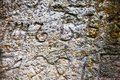 Moss-grown surface of the old stone cross Royalty Free Stock Photo